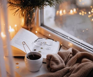 cozy, drink, and book image