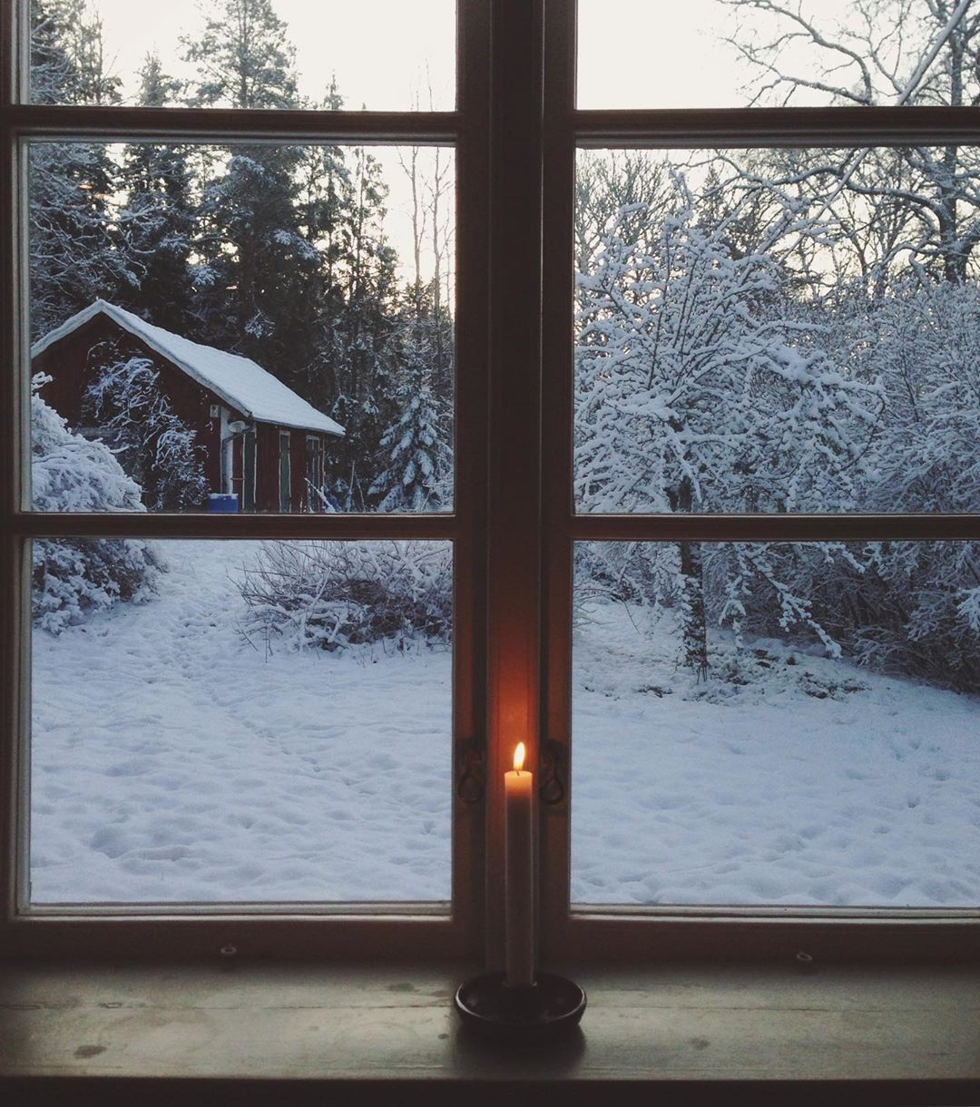 winter, happy holidays, and snow image