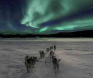 arctic, aurora borealis, and christmas image