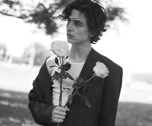 timothee chalamet, black and white, and actor image