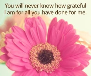grateful and thank you image