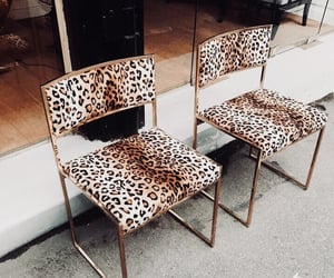 aesthetic, leopard print, and animal print image