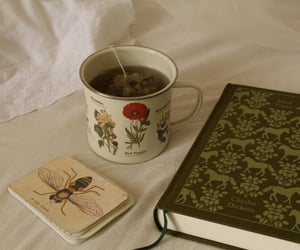 book, tea, and aesthetic image