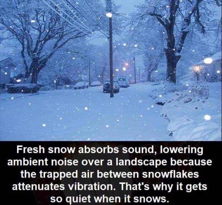 interesting, snow, and winter image