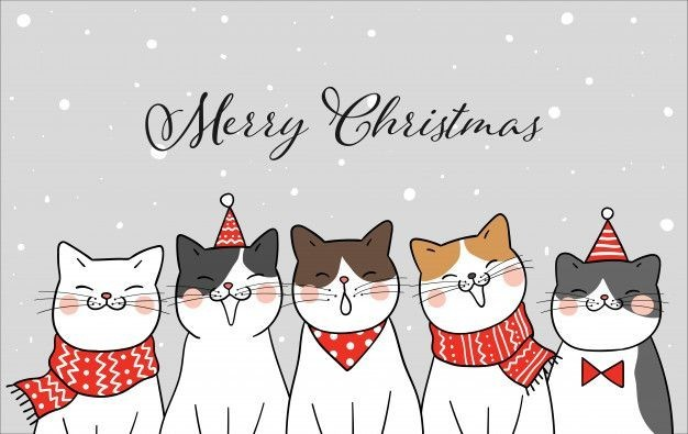 Imagem de cats, felinos, and merry christmas