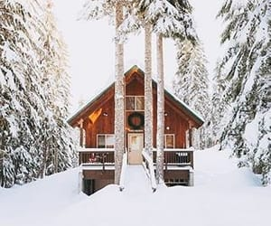 cabin, winter, and woods image