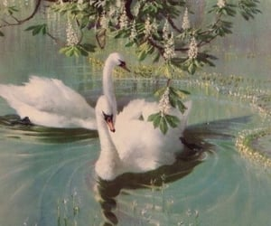 aesthetic, Swan, and vintage image