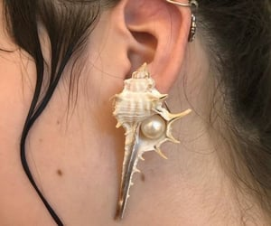 aesthetic, conch, and ocean image