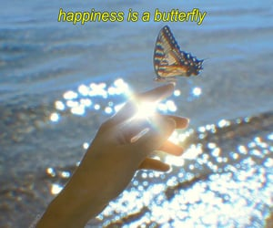 aesthetic, butterfly, and vintage image