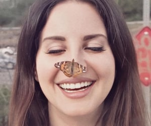 lana del rey, butterfly, and vintage image