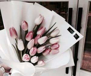 aesthetic, flower, and lifestyle image