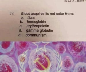 blood, color, and communism image