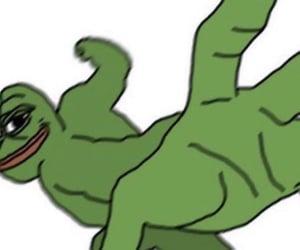 meme, pepe, and reaction image