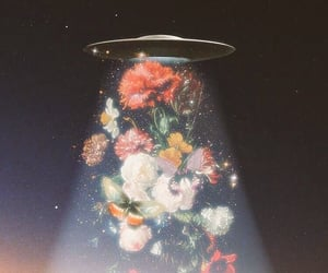 flowers and ufo image
