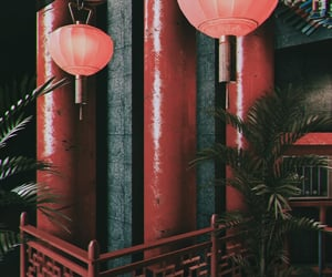 chinese restaurant, ferns, and pillars image