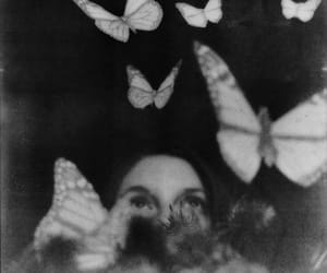 butterflies, girl, and monochrome image