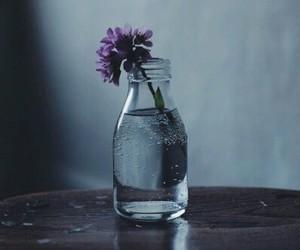 alive, dark, and honest image