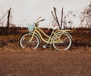 bike, fence, and road image