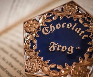 chocolate, frog, and harrypotter image