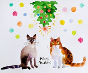 cats, two cats, and christmas tree image