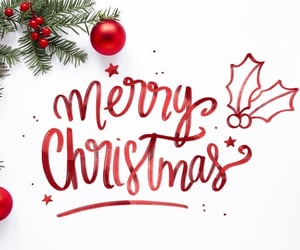 christmas, everyone, and merry christmas image