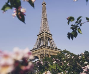 eiffel tower, europe, and travel image