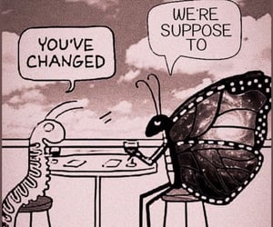 butterfly, growth, and words image