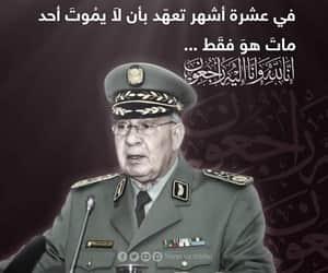 Algeria, algerie, and amazigh image