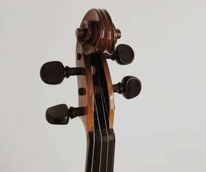 violin, music, and viola image