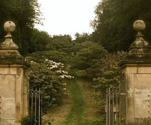 aesthetic, garden, and nature image