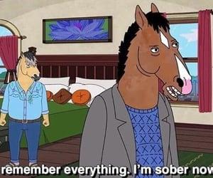 cartoon, quotes, and bojack horseman image