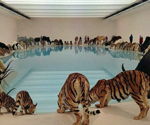 aesthetic, art, and animals image