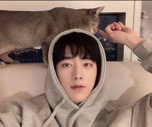 actor, asian, and cat image