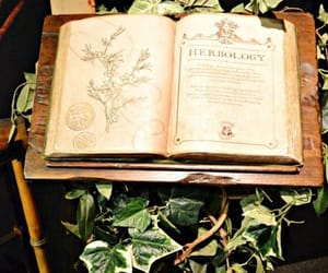 book and herbology image