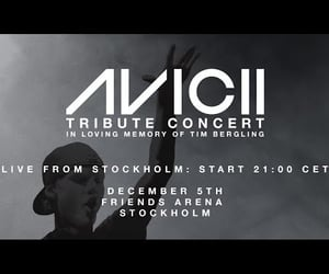 concert, music, and tribute image