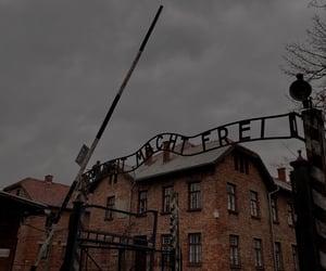 auschwitz, jews, and extermination image