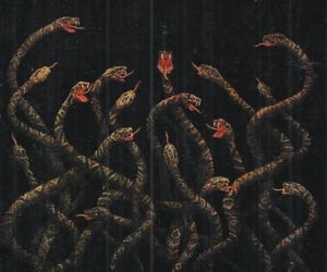 snake, art, and dark image