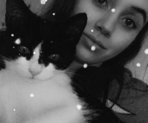 cat, cooper, and snapchat image