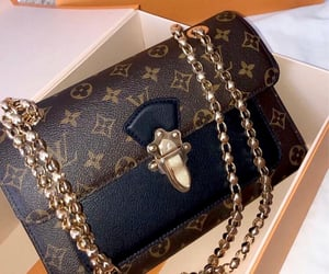 bags, glamorous, and Louis Vuitton image