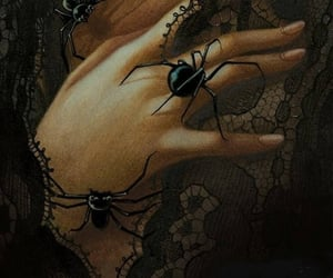 gothic, hand, and spider image