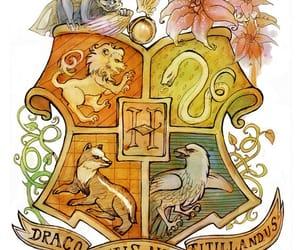 harry potter, magic, and магия image