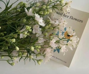 flowers, book, and white image