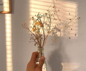 flowers, sun, and theme image