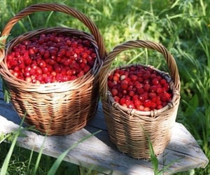 raspberry, berries, and cottagecore image