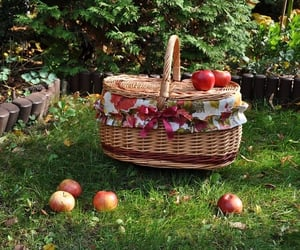 apple, aesthetic, and fairy image