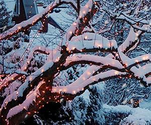 christmas, gif, and nature image