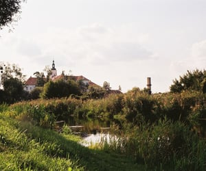 beautiful, castle, and lomography image