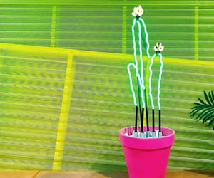 cactus, lamp, and neon image