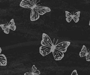 aesthetic, butterflies, and wallpapers image