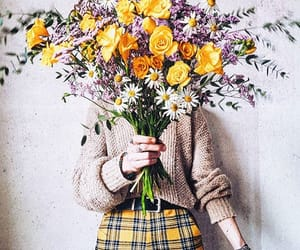 bouquet, daisies, and fashion image